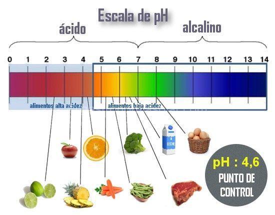 conservas caseras pH