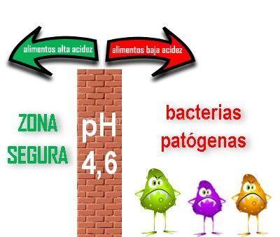 conservas caseras bacterias